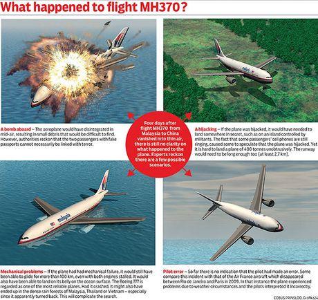Tim thay nhieu manh vo cua may bay MH370 - Anh 3