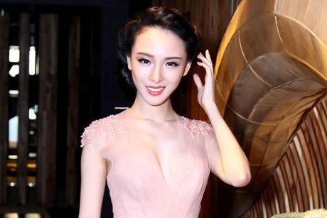 Me HH Phuong Nga gui don len Thu tuong yeu cau doi CQDT - Anh 2
