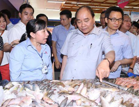 Thu tuong 'vi hanh' kiem tra thuc pham tai Thanh pho Ho Chi Minh - Anh 10