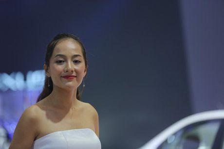 Nhung bong hong 'dep la' khoe sac o trien lam o to Viet Nam 2016 - Anh 1