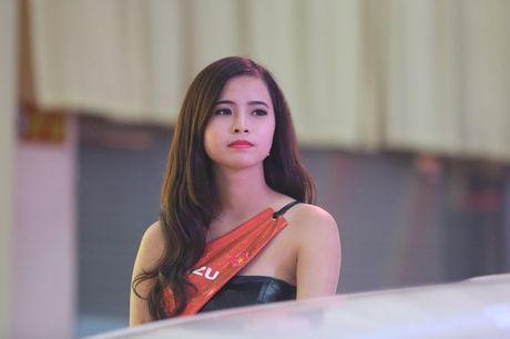 Nhung bong hong 'dep la' khoe sac o trien lam o to Viet Nam 2016 - Anh 2