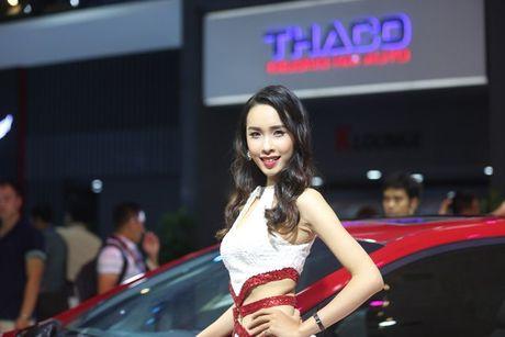 Nhung bong hong 'dep la' khoe sac o trien lam o to Viet Nam 2016 - Anh 6
