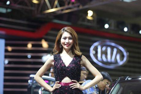 Nhung bong hong 'dep la' khoe sac o trien lam o to Viet Nam 2016 - Anh 7
