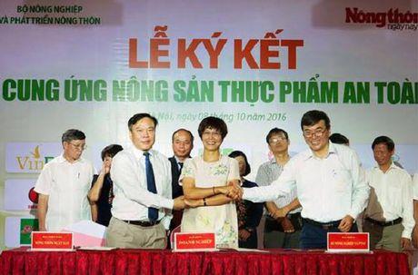 15 doanh nghiep ky ket cung ung nong san thuc pham an toan - Anh 1
