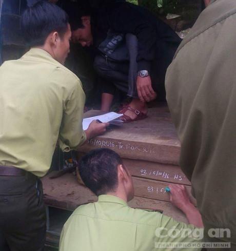 Quang Binh: Bat giu xe bien xanh van chuyen go lau trai phep - Anh 1