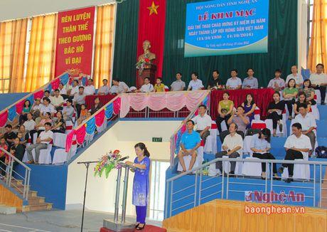 Khai mac Giai the thao Hoi nong dan Tinh lan thu IV - Anh 1