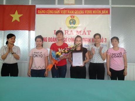 LDLD huyen Quynh Phu (Thai Binh): Thanh lap Ban Chap hanh CDCS Cong ty TNHH Hoa Do 3 - Anh 1
