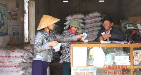 Nghe An: 74% HTX nong nghiep chuyen doi hoat dong - Anh 2