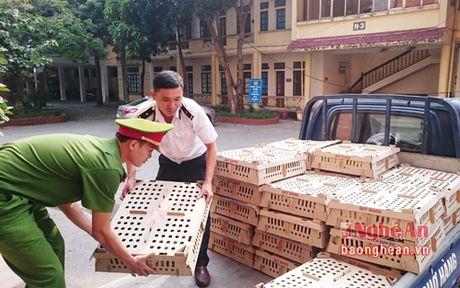 Gan 5000 gia cam khong ro nguon goc tren xe khach Bac - Nam - Anh 1