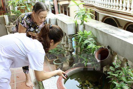 Khan cap dieu tra o dich Zika tai Binh Duong, Thanh pho Ho Chi Minh - Anh 1