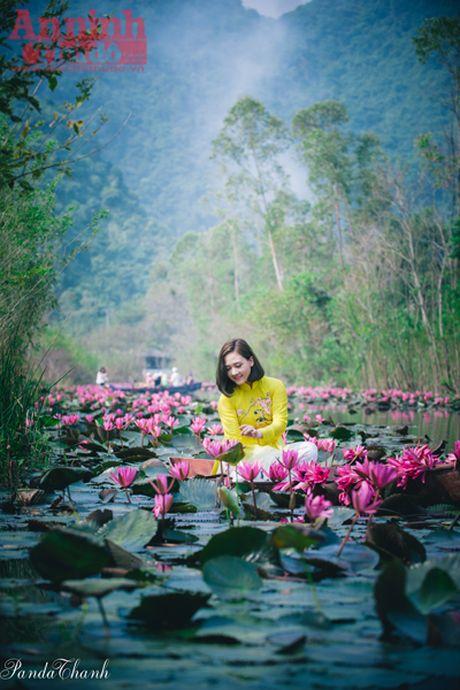 Suoi Yen dep me hon trong nang thu - Anh 4