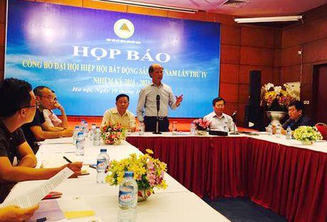 Nhieu 'ong lon' tham gia Hiep hoi BDS Viet Nam nhiem ky IV (2016 - 2021) - Anh 1