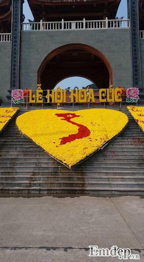 Den chua Ba Vang thuong ngoan hoa cuc 7 mau - Anh 1