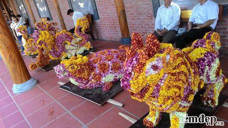 Den chua Ba Vang thuong ngoan hoa cuc 7 mau - Anh 6