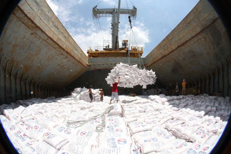 Philippines se mua them hon 293.000 tan gao cua Viet Nam - Anh 1
