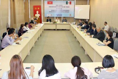 Viet Nam – Mexico, ket noi diem cau giua ASEAN va Chau My Latinh - Anh 1