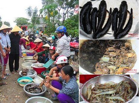 Nhon nhip cho thuy san dong que - Anh 2