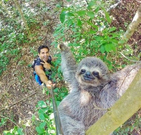 20 buc anh selfie noi tieng khap the gioi - Anh 1