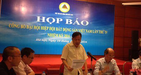 Ban chap hanh VNRea nhiem ky toi se co 9 Pho chu tich - Anh 1