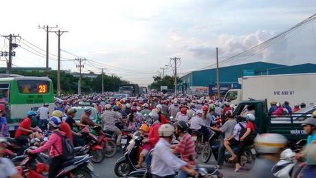 Ket xe kinh hoang trong khu cong nghiep o Sai Gon - Anh 3