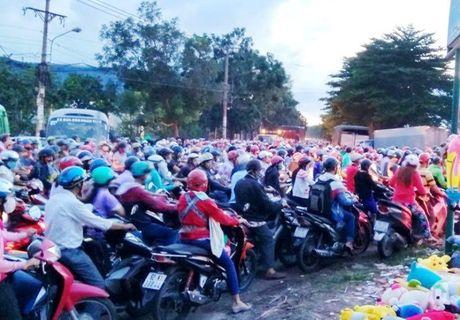 Ket xe kinh hoang trong khu cong nghiep o Sai Gon - Anh 4