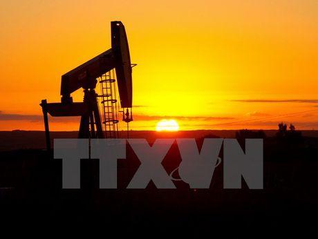 IEA hoi thuc OPEC cat giam san luong de gia dau tang ben vung - Anh 1