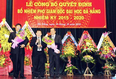 Bo nhiem lai chuc danh Pho Giam doc DH Da Nang - Anh 1
