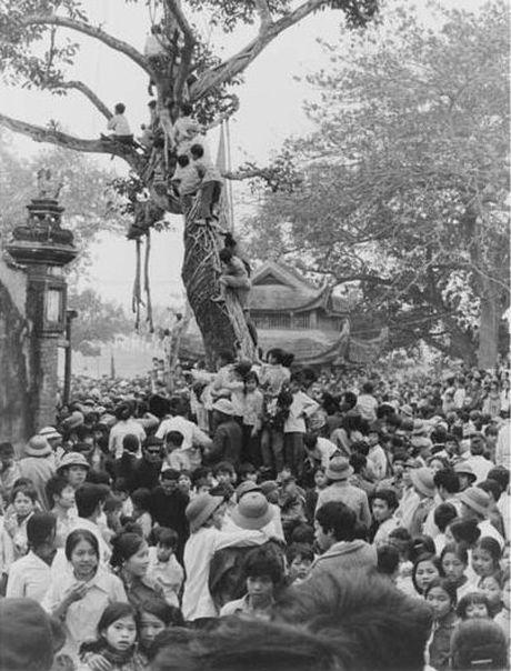 Nha ngoai giao nguoi Anh chup anh Ha Noi thap nien 1980 - Anh 3