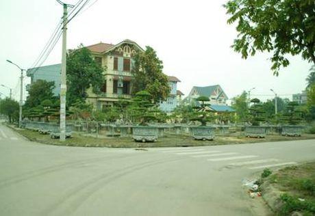 Thai Nguyen xay dung quy che quan ly, dau tu xay dung khu dan cu, khu do thi - Anh 1