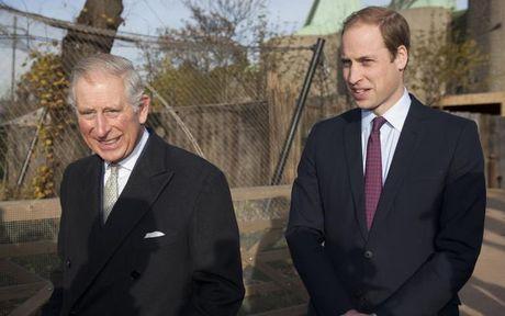 Hoang tu William bi bo len ke hoach chiem ngoi? - Anh 2