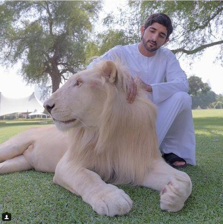 Xon xao clip cop tam bien o Dubai - Anh 3
