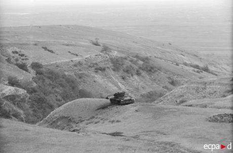 Loat anh kinh hoang mat tran Stalingrad nam 1942-1943 - Anh 5