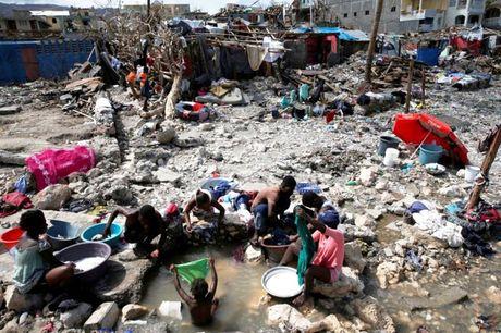 WHO chuyen 1 trieu lieu vaccine chong benh ta toi Haiti - Anh 1