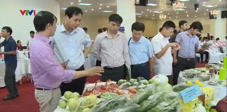 Khai mac Tuan le nhan dien nong san thuc pham an toan Viet tai Ha Noi - Anh 1