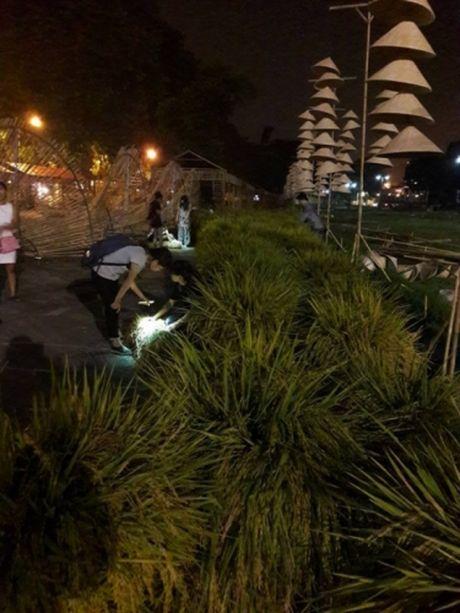 Lich trinh hoat dong cu the cua chuong trinh Festival Ao Dai Ha Noi 2016 - Anh 1