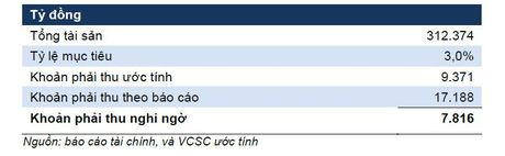 Sacombank va nhieu van de sau sap nhap - Anh 4