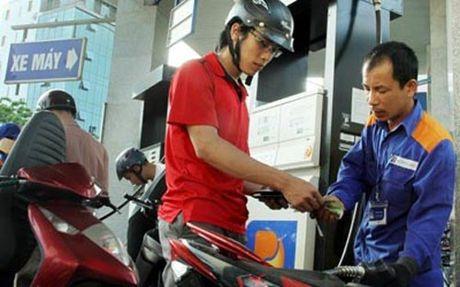 Bo Tai chinh: Thue phi chiem 50% gia xang tai Viet Nam la van thap - Anh 1