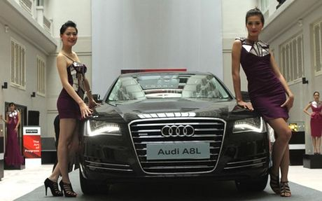 Trieu hoi xe Audi A8 tai Viet Nam vi dinh loi - Anh 1