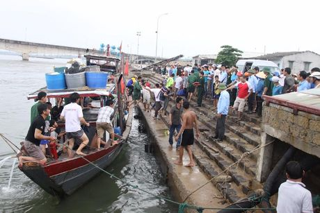 Chim tau o Quang Tri: Khen thuong ngu dan dung cam cuu nan - Anh 1