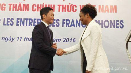 Tang cuong ket noi doanh nghiep Viet Nam va doanh nghiep Phap ngu - Anh 3