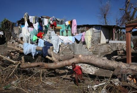 Hon 1.000 nguoi thiet mang do bao Matthew tai Haiti - Anh 1