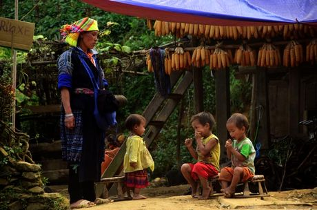 Thu sang, mien son cuoc Mu Cang Chai dep den nao long - Anh 10