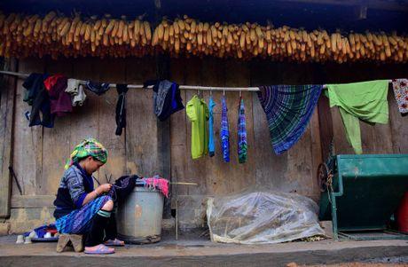 Thu sang, mien son cuoc Mu Cang Chai dep den nao long - Anh 12