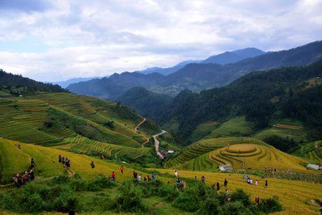 Thu sang, mien son cuoc Mu Cang Chai dep den nao long - Anh 6