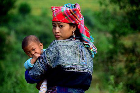 Thu sang, mien son cuoc Mu Cang Chai dep den nao long - Anh 9