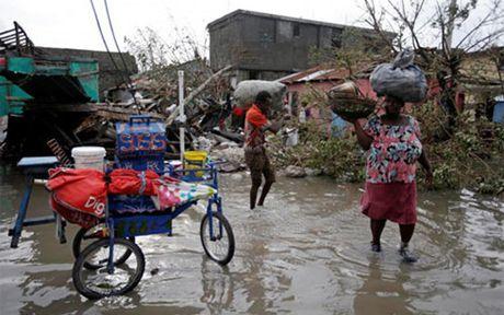Lien Hop Quoc keu goi quyen 119 trieu USD cho nan nhan con bao Haiti - Anh 1