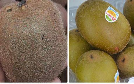 Lam sao de tranh mua nham kiwi Trung Quoc 'doi lot' hang xin? - Anh 1