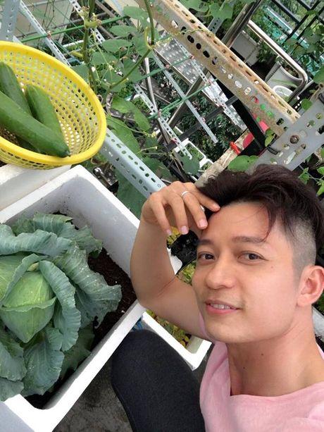 Vuon rau trai sum sue cua nha thiet ke ao dai Thuan Viet - Anh 2