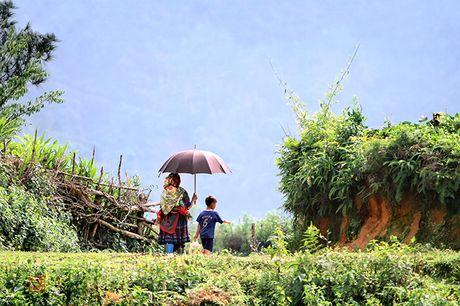 Nhung dua tre tren lung 'Hoang Su Phi - Ha Giang' - Anh 11
