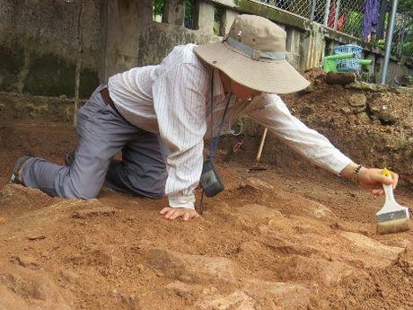 Phat hien dia co o noi nghi chon cat vua Quang Trung - Anh 2
